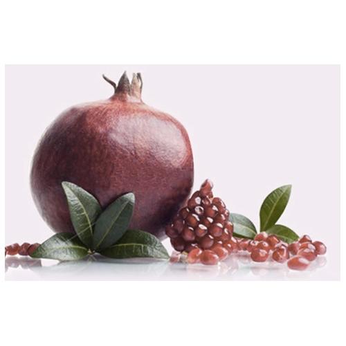 Pomegranate Tree Wondful One (tm)
