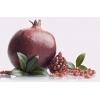 Pomegranate Tree Ako